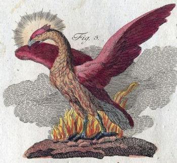La Fenice che risorge, dal Libro delle Creature Mitologiche di Friedrich Bertuch 1806