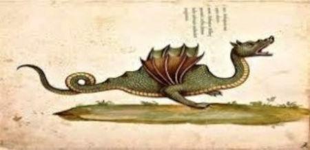 Drago Tarantasio da Serpentum et Draconum Historiae di Ulisse Aldrovandi 1640