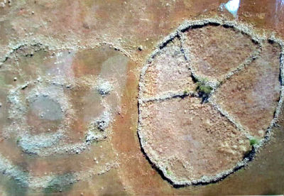 """L'osservatorio astronomico megalitico più antico ritrovato chiamato """"il Calendario di Adamo"""" in Sud Africa e risalente ad allineamenti astronomici risalenti a 160.000 anni fa."""