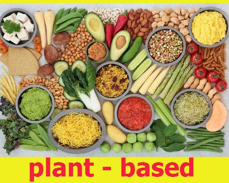 L'alternativa 100% vegetale