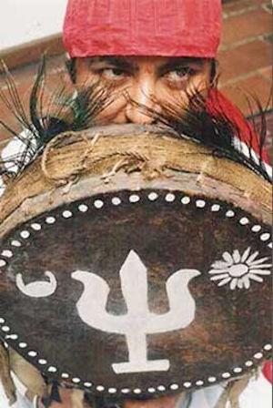 """L'Yggdrasil, l' """"Albero celtico della Via dalle tre braccia"""", sul tamburo di uno sciamano nepalese"""