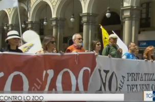 No Zoo a Torino su Rai3